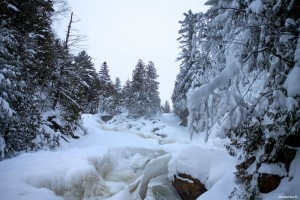 Winter BCP Assessment