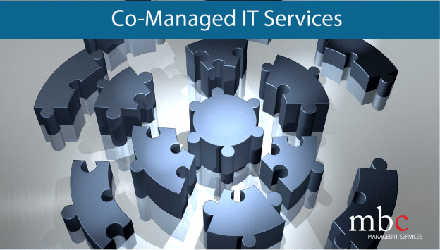 Co-Managed Services