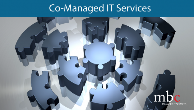 co-managed IT Services