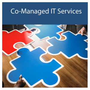 Co-Managed IT Services.